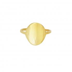 Δαχτυλίδι σε οβαλ σχήμα απο επιχρυσωμένο ασημί 925. D-6-G-59